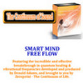 Thumbnail SMART MIND  FREE FLOW.mp3